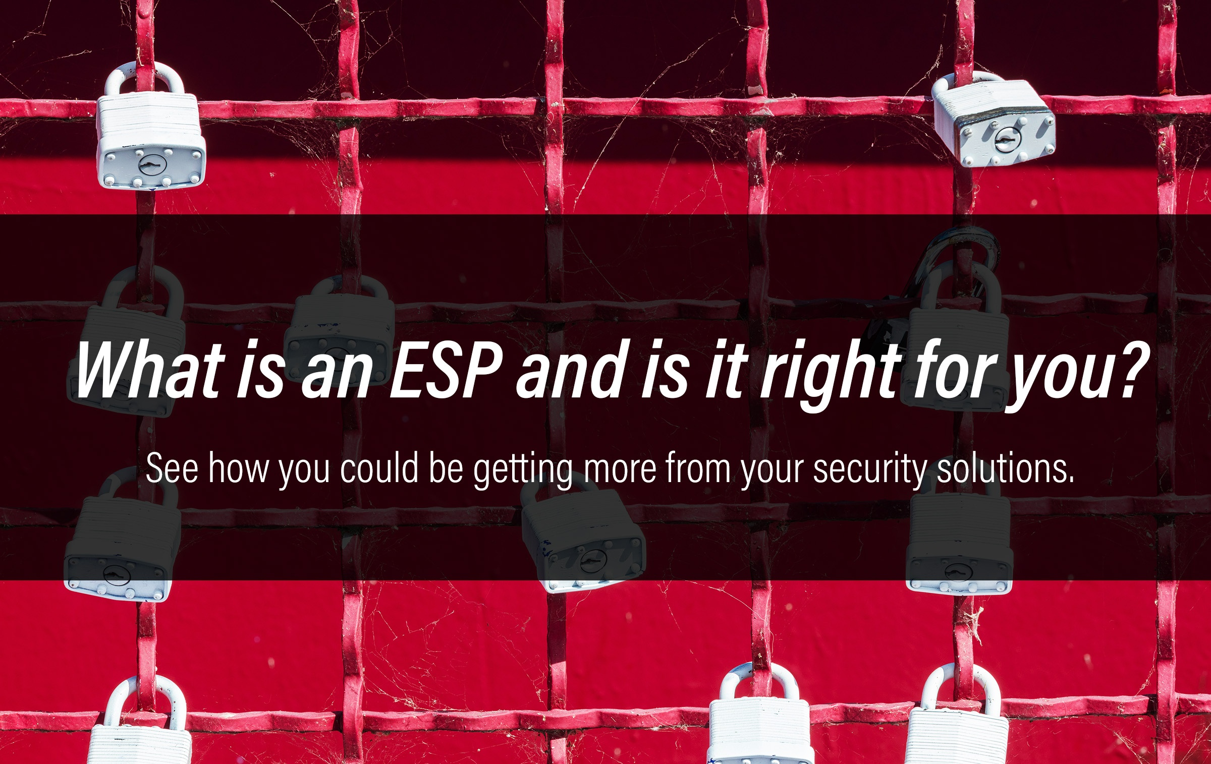 ESP Security Solutions Will Electronics Header